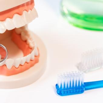 メタボ検診に「歯」が加わったことに納得!