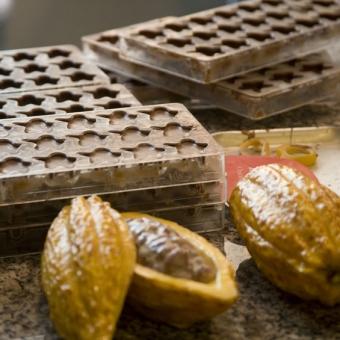 女子必見!チョコの成分・カカオポリフェノールで血液サラサラ?