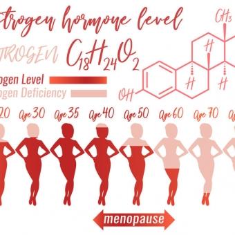 女性らしいカラダの基礎となるホルモン「エストロゲン」