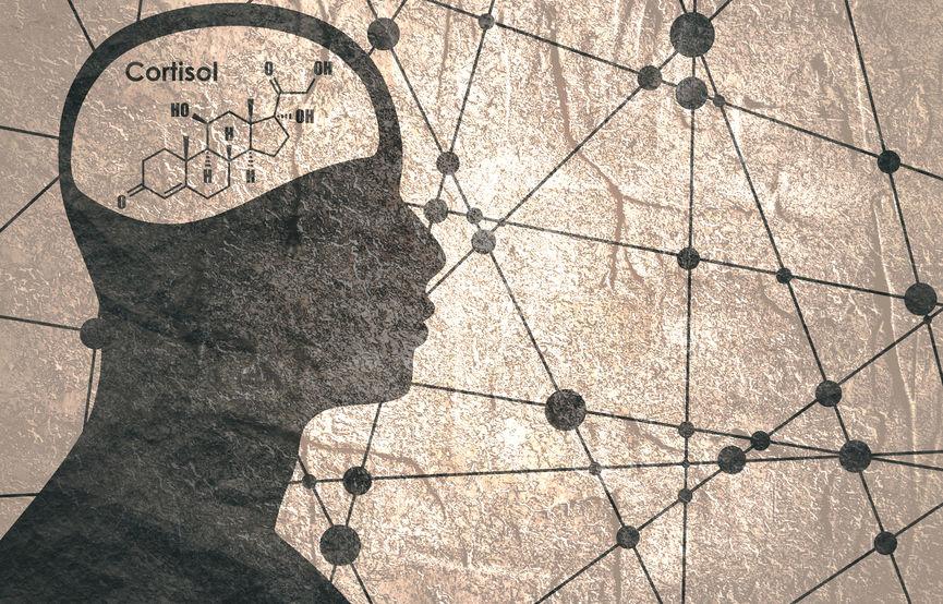 ストレスホルモンと言われるコルチゾールの働きと生活習慣病
