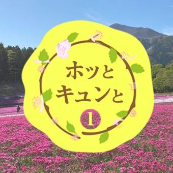 【#1 ホッとキュンと】羊山公園①