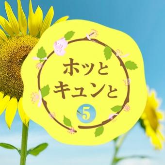 【#5 ホッとキュンと】ひまわり畑