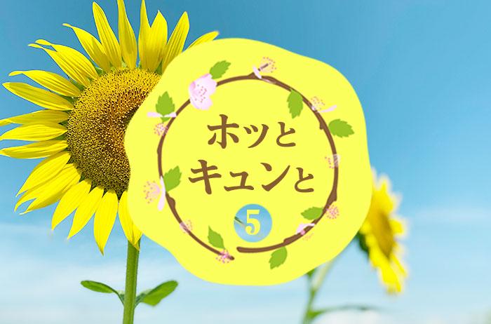 【#5ホッとキュンと】ひまわり畑
